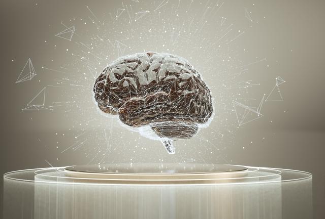 記憶はどう作られる?情報処理のメカニズム