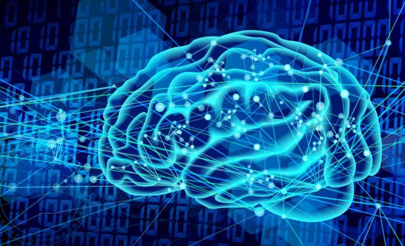 相乗効果でパワーアップ!意味記憶とエピソード記憶の違いを知ろう