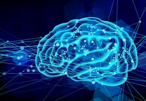 記憶力とやり抜く力の深いカンケイ~4人の脳内キーパーソン(前編)