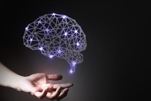 脳科学からアプローチ