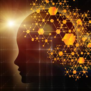 脳科学から解き明かす、最高の脳を手に入れる2日間